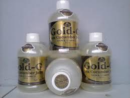 Teripang Emas